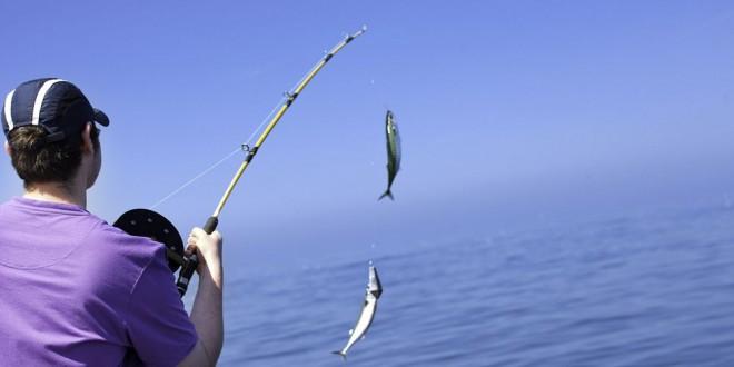 صيد السمك بالسنارة
