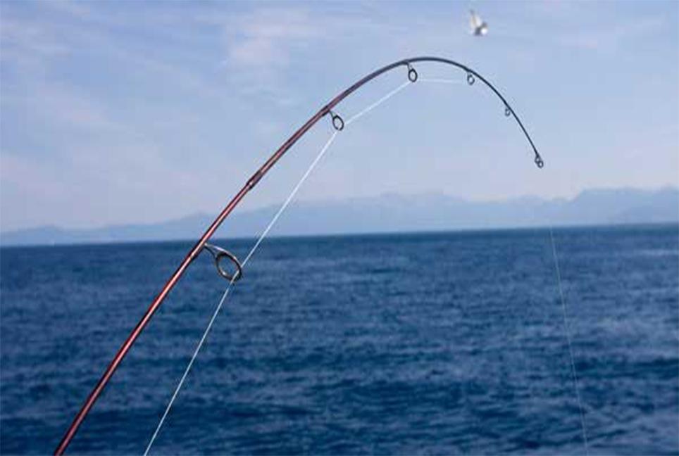 سنارة صيد السمك